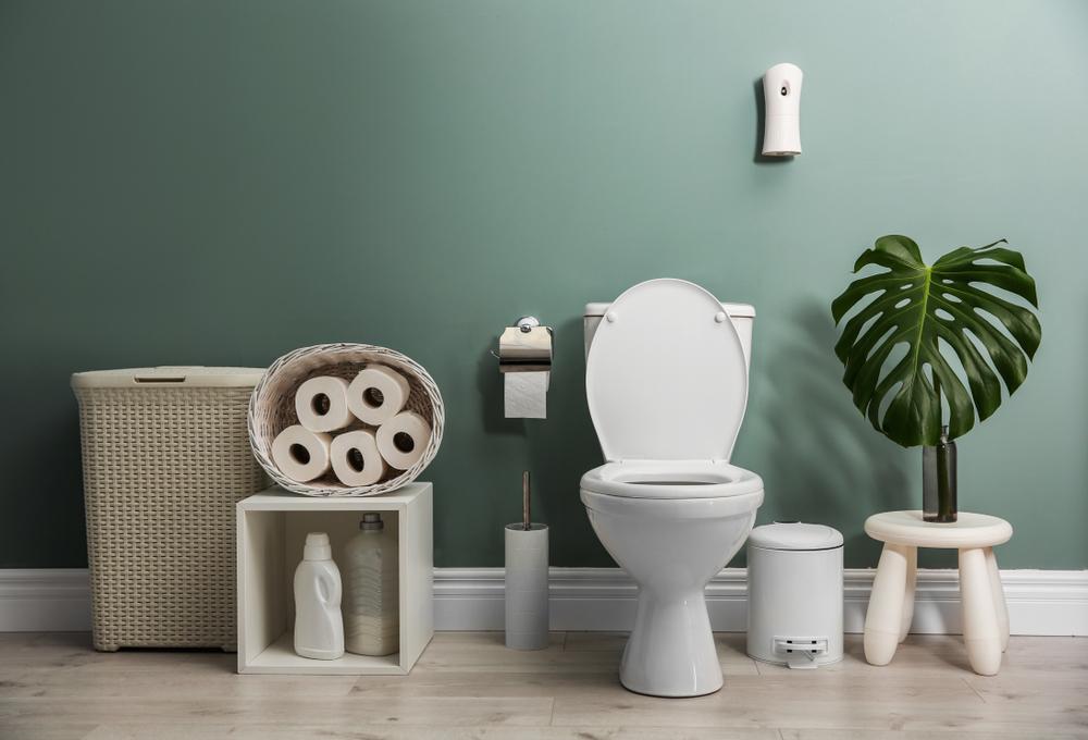 abattant des toilettes